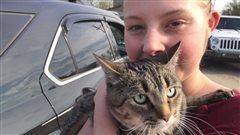 Un chat et un certificat de divorce parmi les rescapés des flammes à Fort McMurray