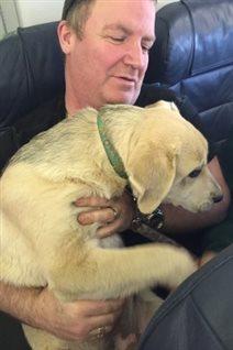 Un passager tient un chien sur ses genoux lors du vol 1515 de Canadian North