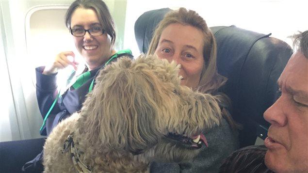 Un chien sur les genoux de passagers du vol 1515 de Canadian North