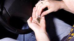 Drogue au volant : les policiers ontariens pourront suspendre le permis