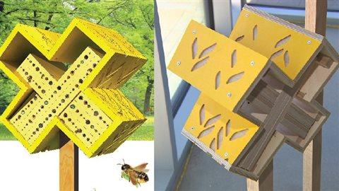 Des maisons d abeilles originales install es l for Abeilles dans la maison