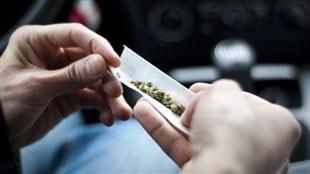 Maintenant, les Canadiens peuvent cultiver leur propre cannabis médicinal
