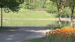 Le parc du Mont-Royal fête en vert ses 140ans