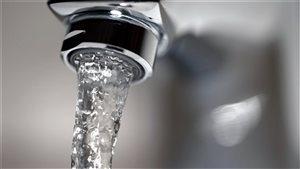 En 2012, une étude a révélé que la quantité de plomb dépassait les normes établies par Santé Canada dans 70 % des échantillons d'eau prélevés à Brandon au Manitoba.