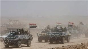 Les forces irakiennes se dirigent vers Falloujah.