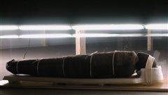 La fascinante histoire de la momie de l'UQAM exposée dimanche