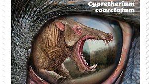 Le Cypretherium coarctatum de la Saskatchewan.