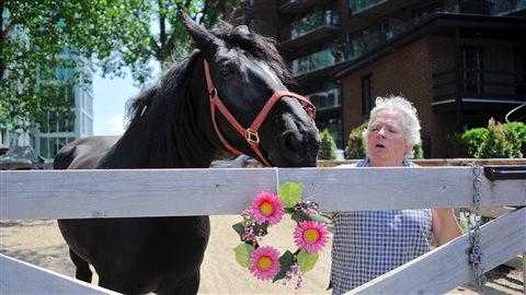 Le forgeron se rend chaque six semaines au Horse Palace de Griffintown pour ferrer les deux juments de Judy Waldon.