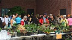 Une foire horticole à Sudbury pour encourager les pratiques écoresponsables