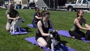 La journée canine du Centre communautaire juif Rady a commencé par une séance de yoga pour chiens.