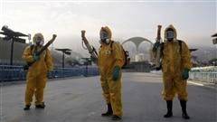Zika : des scientifiques demandent le report des Jeux olympiques
