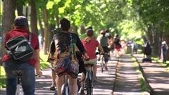 Les cyclistes sont de plus en plus nombreux sur les routes du Québec