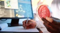 La centralisation des laboratoires médicaux inquiète en Estrie