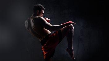 Les arts martiaux mixtes: une popularité qui ne se dément pas