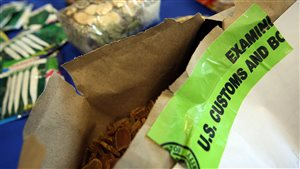 Aliments et frontières : ce que vous pouvez apporter aux États-Unis