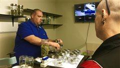 Distribution de la marijuana thérapeutique au N.-B.: David contre Goliath