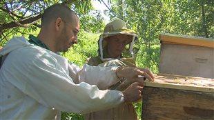Une première récolte de miel à l'Université de Sherbrooke