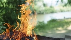 5 questions pour un barbecue sécuritaire