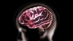 Comment les changements de saison agissent sur le cerveau
