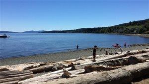 Une sécheresse de niveau 4 touche l'île de Vancouver