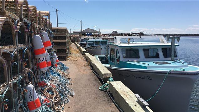 Des bateaux de pêche au homard à l'Île-du-Prince-Édouard