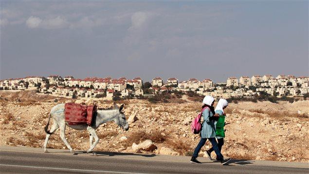 Des écolières palestiniennes marchent près d'une colonie israélienne en Cisjordanie.