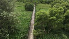 Vandalisme à Nicolet : la passerelle du parc écologique encore une fois ciblée