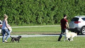 Deux citoyens avec leur chien en direction du parc canin de Brompton