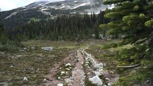 Whistler pour le plaisir de la randonnée