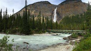 Les chutes Takakkaw dans le parc national Yoho