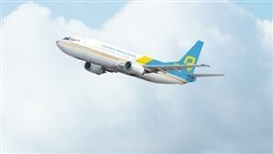 Un avion de New Leaf
