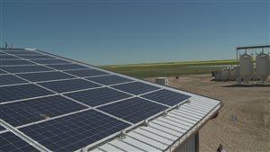 Une ferme de Brant, en Alberta, produit autant d'électricité qu'elle en consomme.