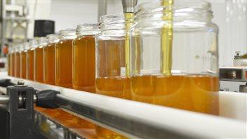 Des tests révèlent que certains miels canadiens sont frelatés
