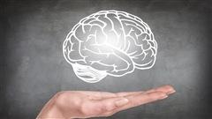 Des jeux d'été pour faire découvrir le cerveau aux enfants