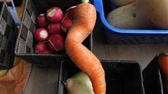 Québec revoit la loi pour élargir la vente des fruits et légumes «moches»