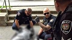 Des policiers d'Ottawa harcelés depuis la mort d'Abdirahman Abdi