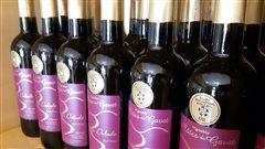 Les rouges du Québec, des vins qui développent leur caractère