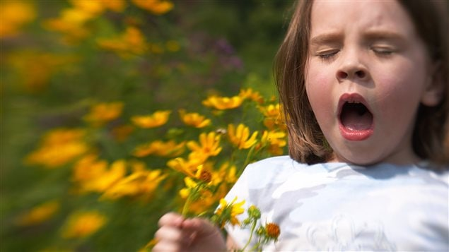 Les allergies saisonnières peuvent être traitées définitivement, souligne la Dr. Assia Hassaine.