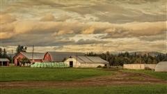 Recette pour un « road trip » de rêve en Colombie-Britannique
