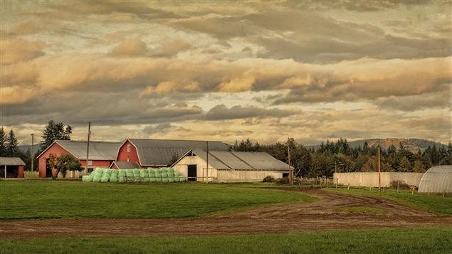 Vue d'une ferme dans la vallée de Cowichan, en Colombie-Britannique