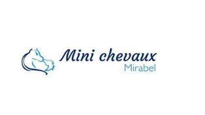 Minis chevaux Mirabel