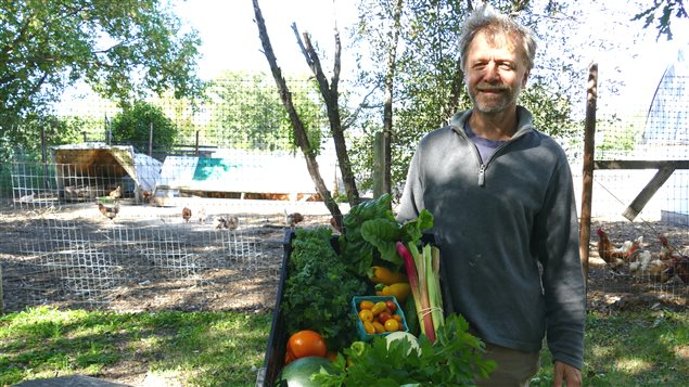 Durant l'été, Almost Urban Farm produit chaque semaine 76 paniers de légumes frais, locaux, de saison et sans pesticides. Chaque panier coûte environ 30 dollars.
