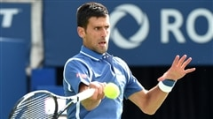 Novak Djokovic et Serena Williams en tête d'affiche à New York