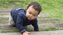 Les bébés plus entreprenants quand les parents sont présents