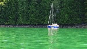 La coloration verte de l'eau dans le détroit de Georgia près de Vancouver est causée par la prolifération d'algues appelées coccolithophoridés.