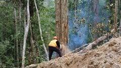 L'empreinte écologique humaine en déclin dans le monde, selon une étude de UNBC