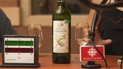 Les meilleurs vins de fin d'été selon la sommelière Élyse Lambert