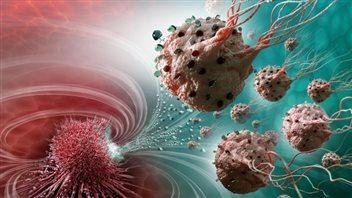 Des nanorobots montréalais contre le cancer