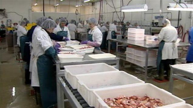 Pêcheries G.E.M., l'une des deux entreprises néo-brunswickoises achetées par Sogelco International au N.-B.