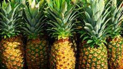 Une dame de Sherbrooke trouve un serpent caché dans un ananas